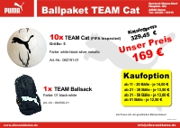 Ballpaket TEAM Cat