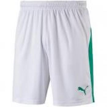Puma Liga Shorts 703431
