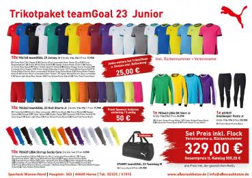 Puma Trikotsatz | Trikotpaket teamGoal 23  Junior