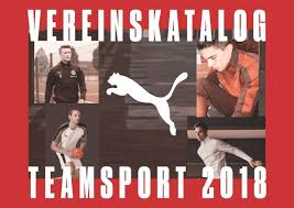 Teamsport Katalog 2018