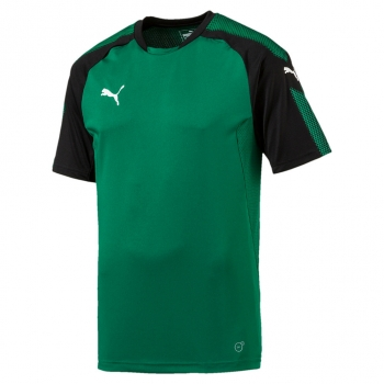 Puma-Ascension-Training-Jersey-grün-schwarz