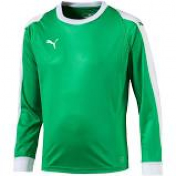 Puma Liga GK Jersey bright green - white