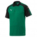 Puma-Ascension-Training-Polo-grün-schwarz