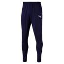 Puma Trainings Pants Pro navy