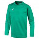 Puma Training Sweat grün