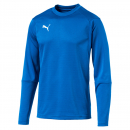 Puma Training Sweat blau